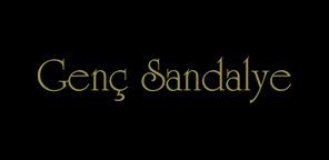 Genc_Sandalye_logo